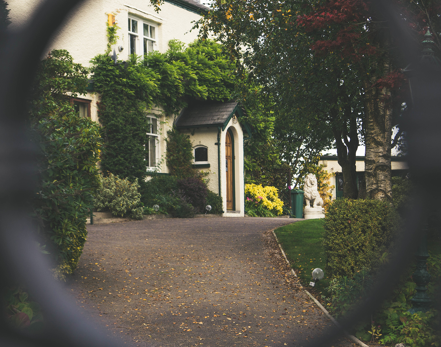Photo of white stucco home with vine growing over door